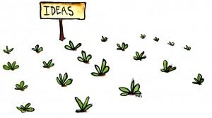Idea field
